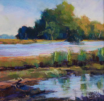 Reflections by Virginia Dauth