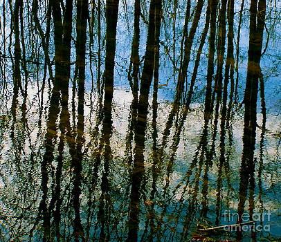 Reflective Blues by Carolyn Kami Loughlin