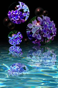 Regina  Williams  - Reflective Bubbles