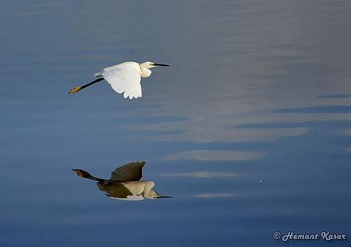 Reflective Flight by H K