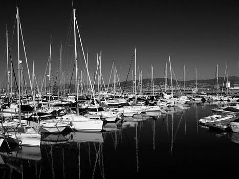 Reflective marina by David Otter