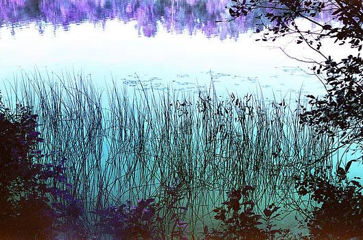 Reflective Tranquility by Lon Casler Bixby