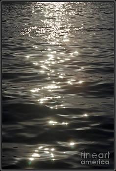 Agus Aldalur - Reflejos en el mar