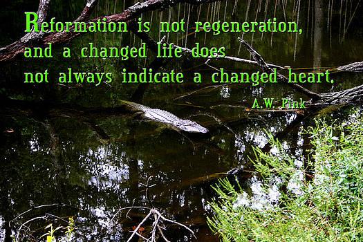 Nina Fosdick - Reformation  is  not  regeneration