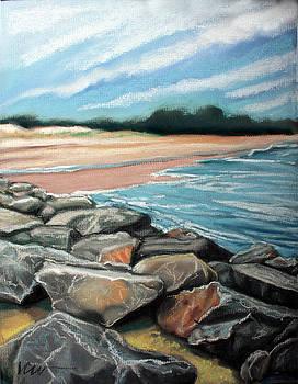 Rehoboth Beach Rocks by Linda Clearwater