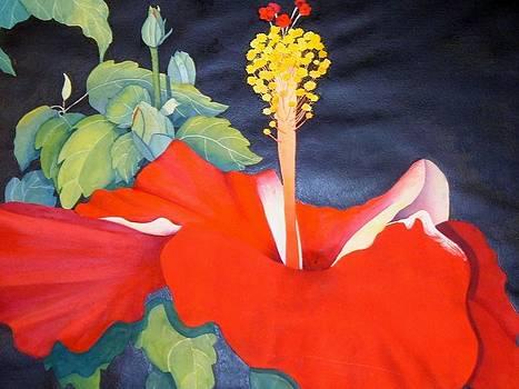 Rejoice by Diane Maurer