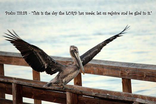 Rejoice by Jo Sheehan