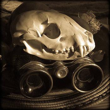 Ronda Broatch - Relics III