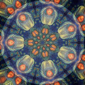 Janelle Schneider - Remembering Dream 7 Petaled Meditation - Heart Medicine Feather