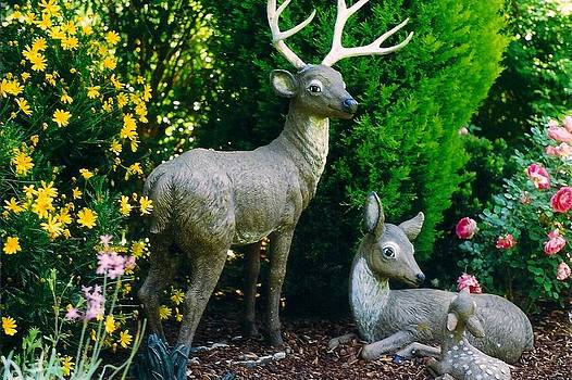 Replica Of Deer Family by Robert Bray