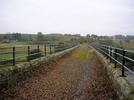 Tom Trimbath - Repurposed Path