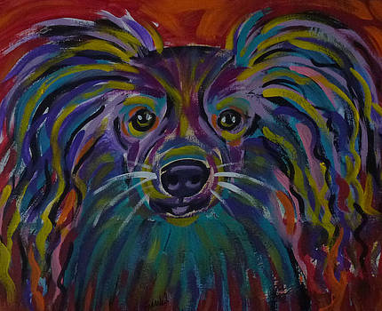 Rescue dog 1 by Patricia Frankel