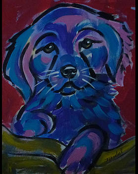 Rescue dog 2 by Patricia Frankel