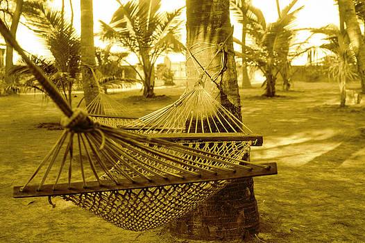 Kantilal Patel - Resort Hammock