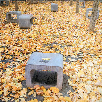 Hannes Cmarits - rest in fall IV