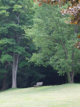 Angela Hansen - Resting at the Park