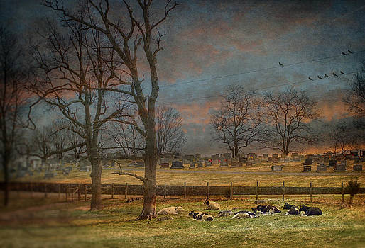 Resting In Peace by Kathy Jennings