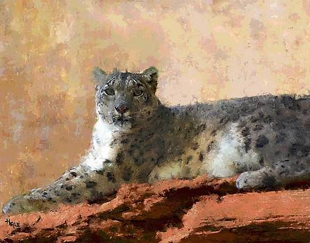 Resting Snow Leopard by Roger D Hale