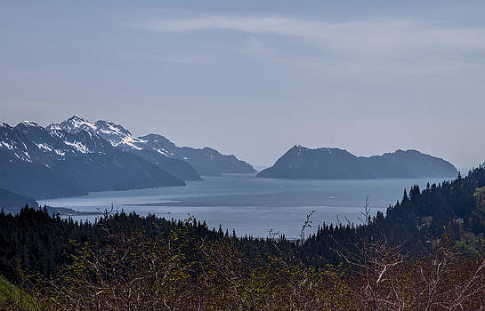 Resurrection Bay by Daniel Sands