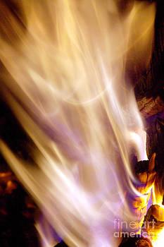 Douglas Taylor - RESURRECTION FLAME