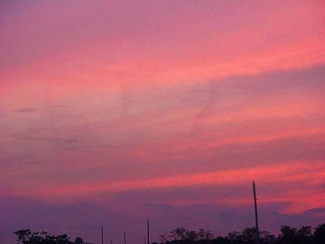 Resurrection in the Sky by Valerie Longo