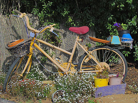 Retired Bicycle by Tony and Kristi Middleton
