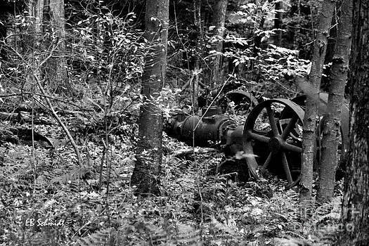 Retired Machines 16 - Lost in the Woods by E B Schmidt