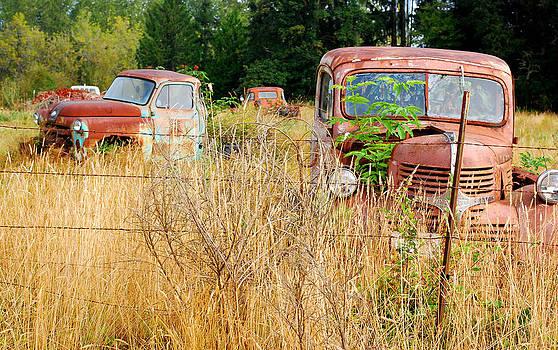 Connie Fox - Retired Trucks in Fields of Gold