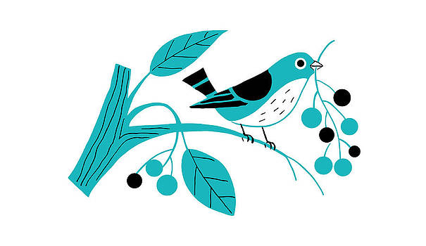 Nancy Lorene - RETRO BERRY BIRD in Aqua and Black
