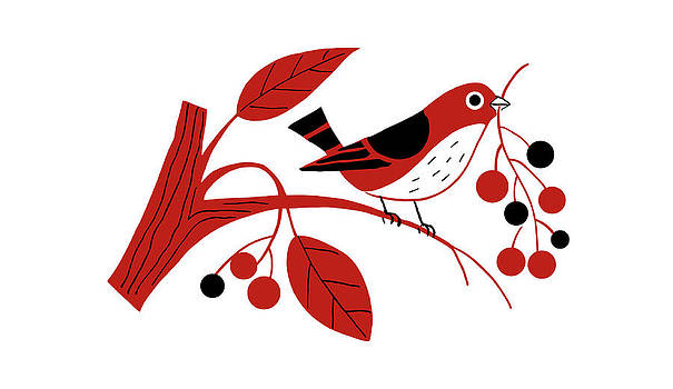 Nancy Lorene - RETRO BERRY BIRD Red and Black
