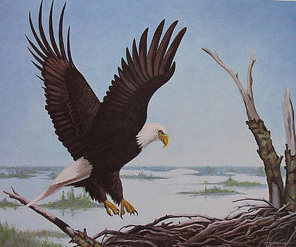 Return to Eagles' Nest by Sherri Anderson