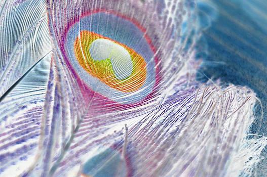 Reversed beauty by Meganne Peck