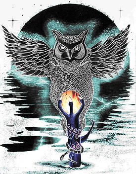 Reversed Owl by Gerald Griffin
