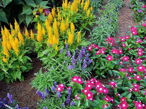 Reynolda Flower Garden 2 by Deborah Willard