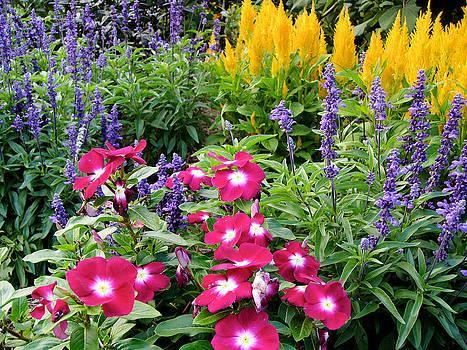 Reynolda Flower Garden 3 by Deborah Willard