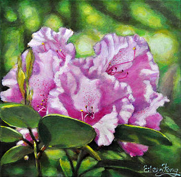 Rhododendron in the Light by Eileen  Fong