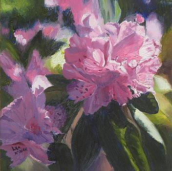 Lea Novak - Rhododendron Squared