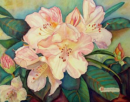 Rhododendrons  by Norma Boeckler