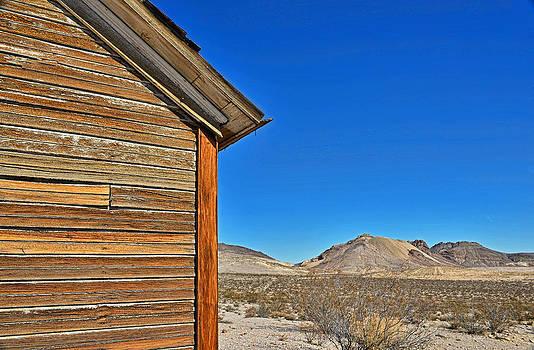 Dana Sohr - Rhyolite Nevada - Ghost Town