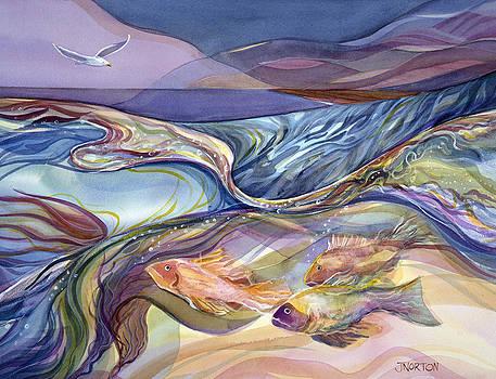 Rhythm of the Bay by Jen Norton
