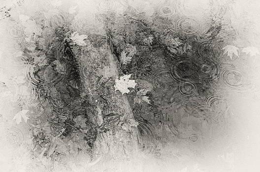 Rhythm of the Rain by Alan Norsworthy