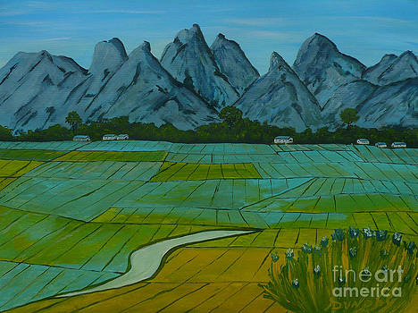 Rice Fields of Japan by Anthony Dunphy