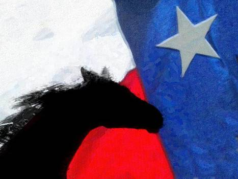 Ricky-bobby and the Texas Flag by Shannon Story