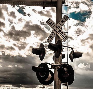 Ride the rails  by Kim Loftis