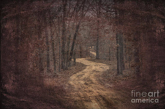Larry Braun - Ridge Trail