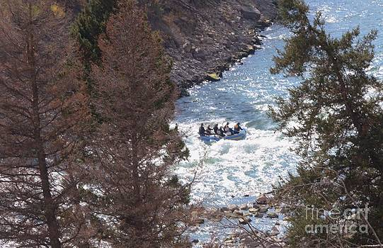 Riding The Rapids by Kathleen Struckle