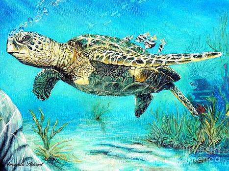 Ridley Sea Turtle by Amanda Hukill