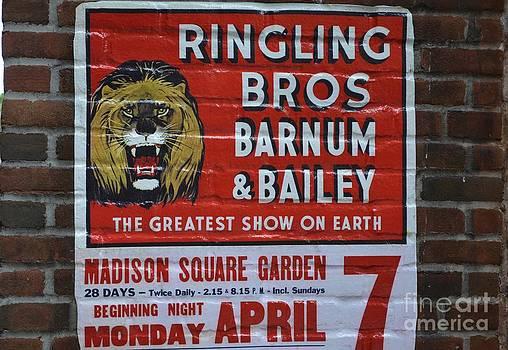 Ringling Bro by Janice Spivey