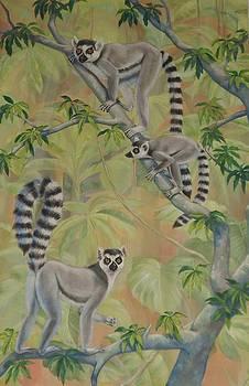 Ringtail Lemur Family by Bonnie Golden
