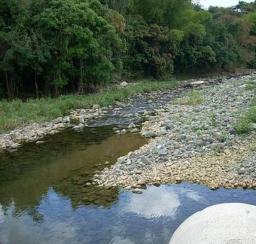 Rio De Guayanilla Pr by Iris  Mora